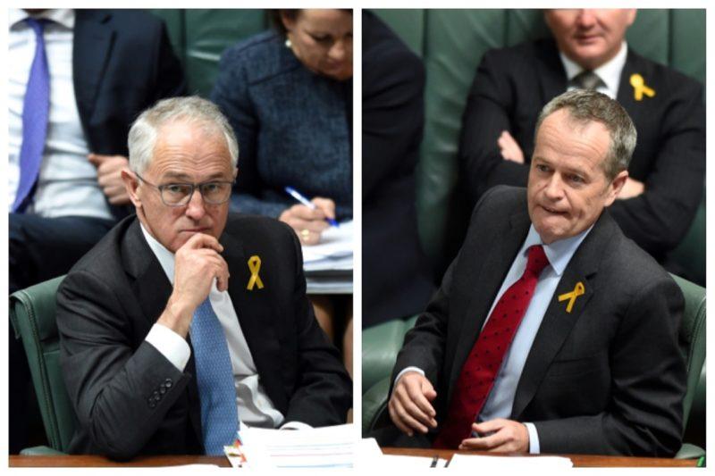 Turnbull Shorten newspoll
