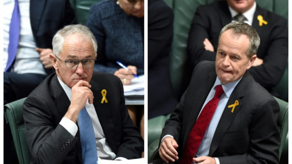 Turnbull Shorten newspoll