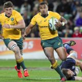 Will Genia led the Wallabies to a win over the Pumas.