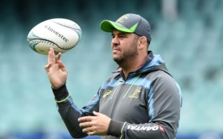 Michael Cheika Wallabies