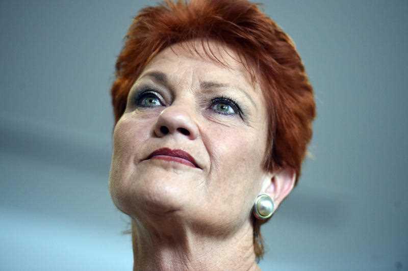 Pauline Hanson welfare reform