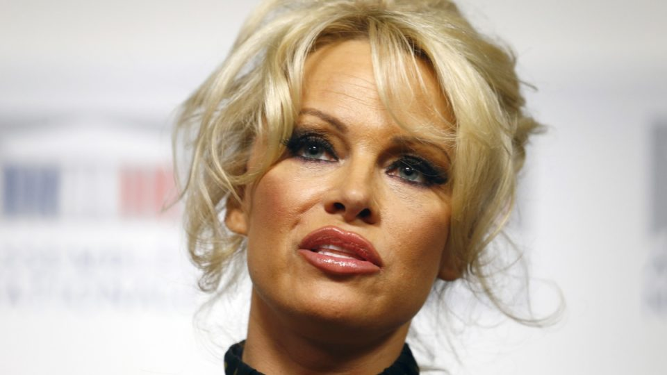 Pamela Anderson sex abuse