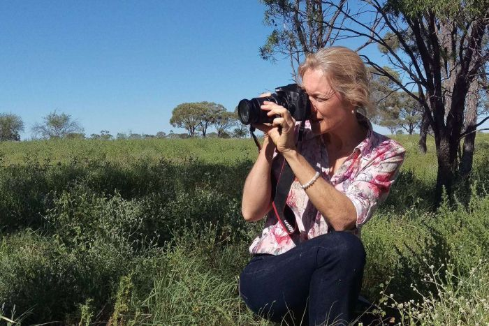 Jenny Milson, from the Department of Agriculture's Longreach office, says the profusion of wildflowers has not been seen for decades. Photo: ABC