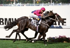 Octagonal, ridden by Shane Dye, crosses the line to win 1995 BMW Cox Plate at Moonee Valley.