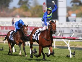 Jockey Nick Hall salutes as he gets to the Caulfield Cup winning post with favourite Jameka