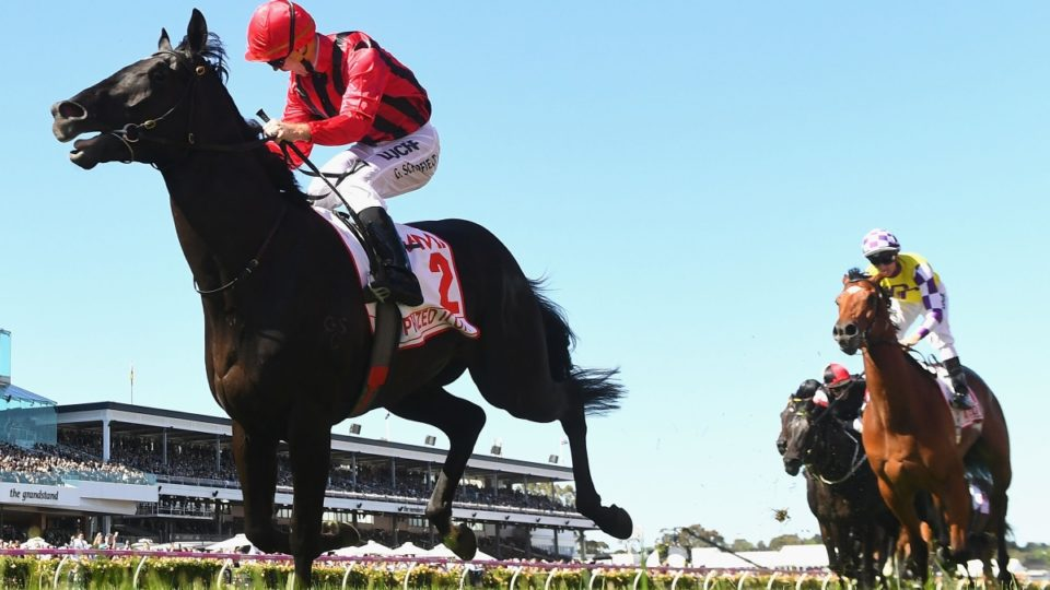 Prized Icon wins the Derby