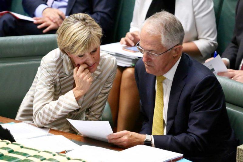 Julie Bishop is deputy leader of the Liberal Party.