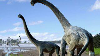 Savannasaurus elliottorum dinosaur
