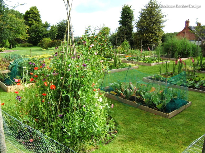 Someone else might have a really productive use for your garden. Photo: Houzz/