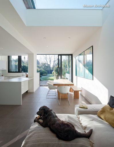 A canine guest can give you some extra spending money. Photo: Houzz/Moxon Architects
