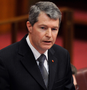 Liberal senator Fawcett said the proposal has been led by the Coalition backbench, not at the cabinet level. Photo: AAP