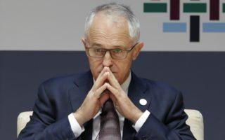 malcom turnbull polling