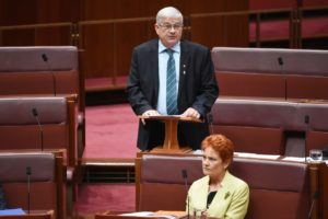 One Nation senator Brian Burston addresses the upper house while Pauline Hanson looks on.