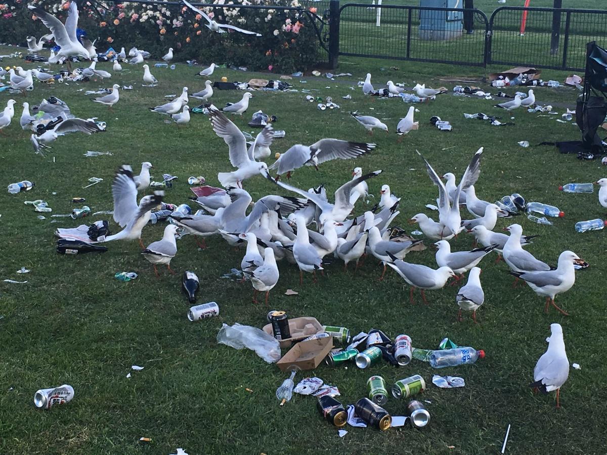 Melbourne cup crowd