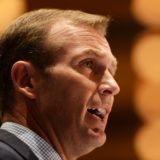 rob stokes candidate to replace Baird as NSW premier