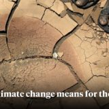 What climate change means for the future