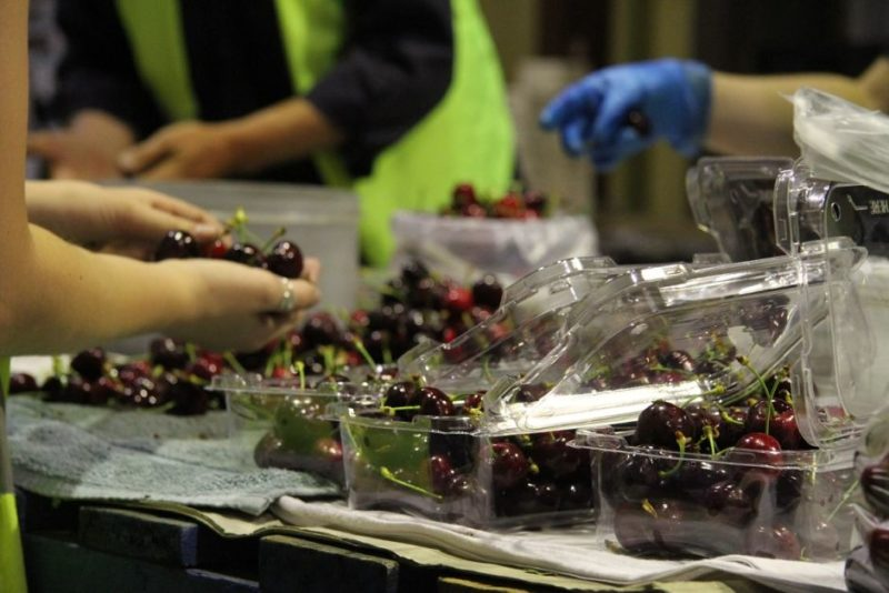 Cherries are fetching $20 per kilo in the lead-up to Christmas.