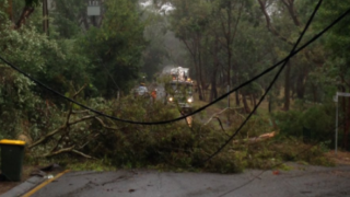 South Australia storms cause power outages