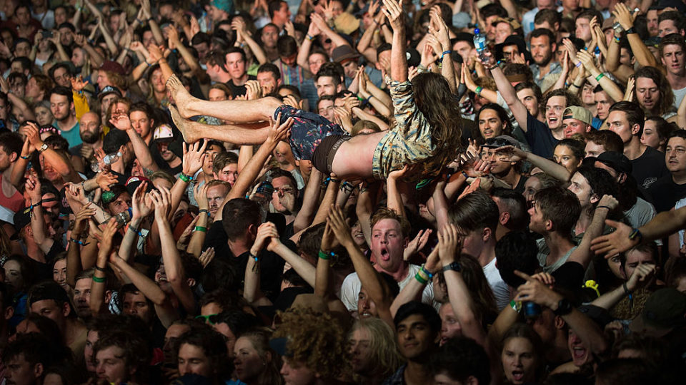 alleged sexual assaults Falls Festival