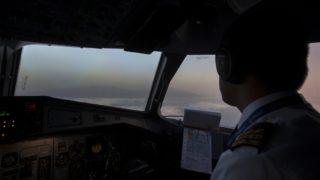Pilots suicide