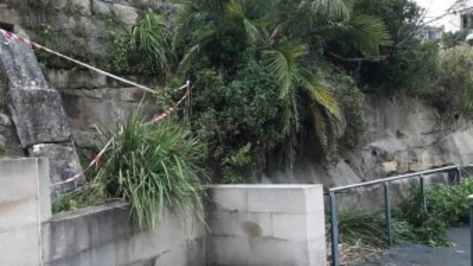 man falls off cliff in Sydney