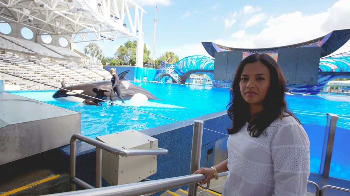 Host Liz Bonnin investigates the practices of SeaWorld. Photo: BBC