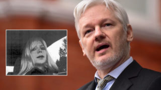 assange-manning