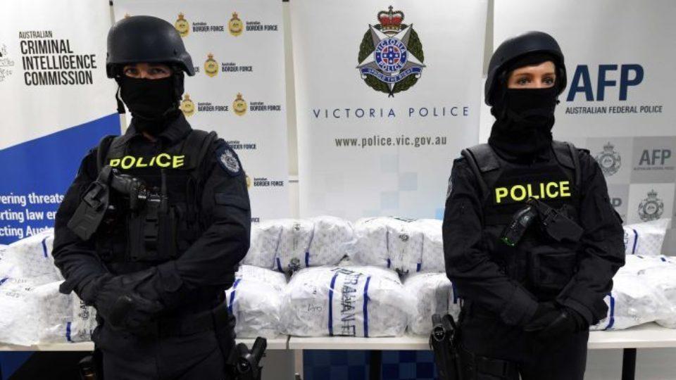 drug arrests