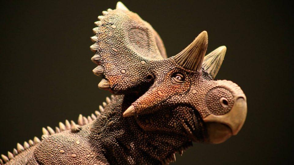 Yehuecauhceratops mudei,