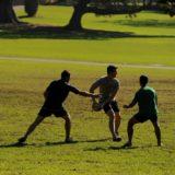 touch football Sydney Domain
