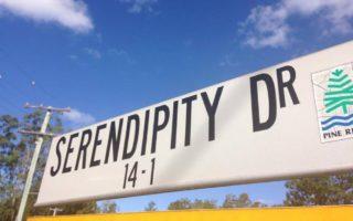 Lucky Serendipity