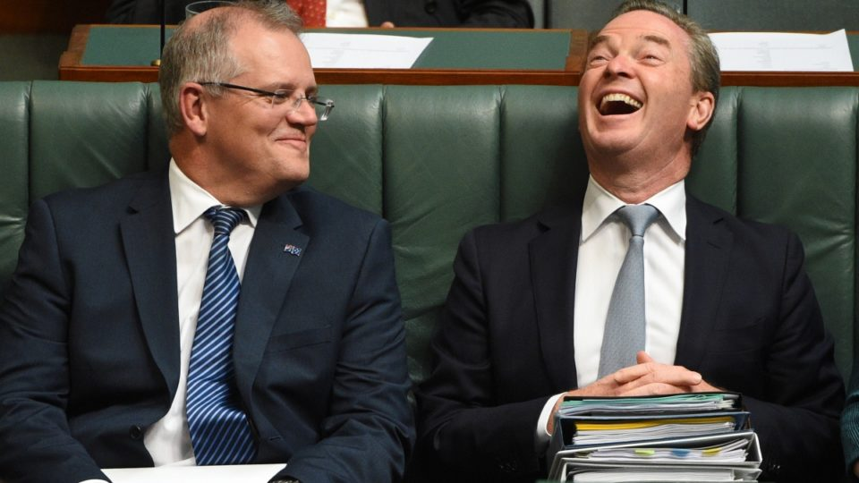 Scott Morrison and Christopher Pyne