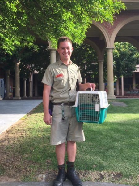 Zookeeper holds Oscar the owl