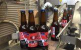 lentil beer