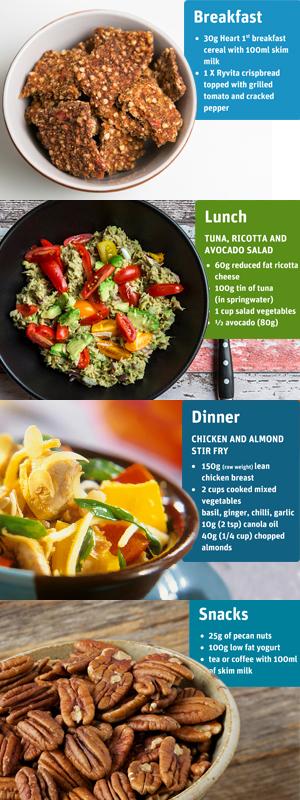 low carb diet 40g