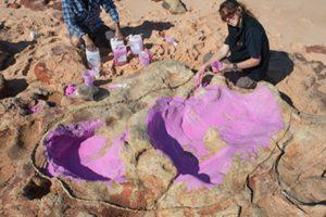Kimberley dinosaur palaeontologist