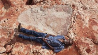 World's biggest dinosaur footprint