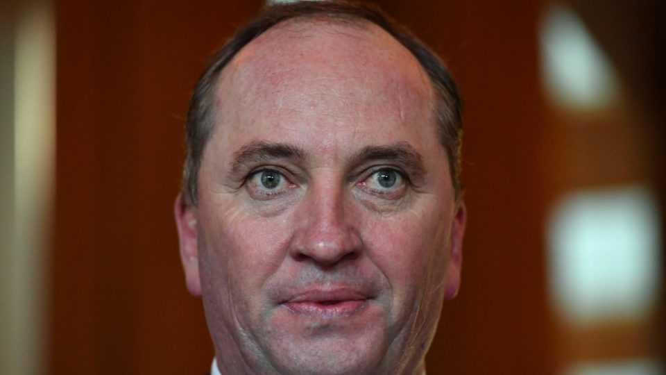 Barnaby Joyce admits he may be a New Zealand citizen
