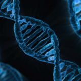 dna discovery