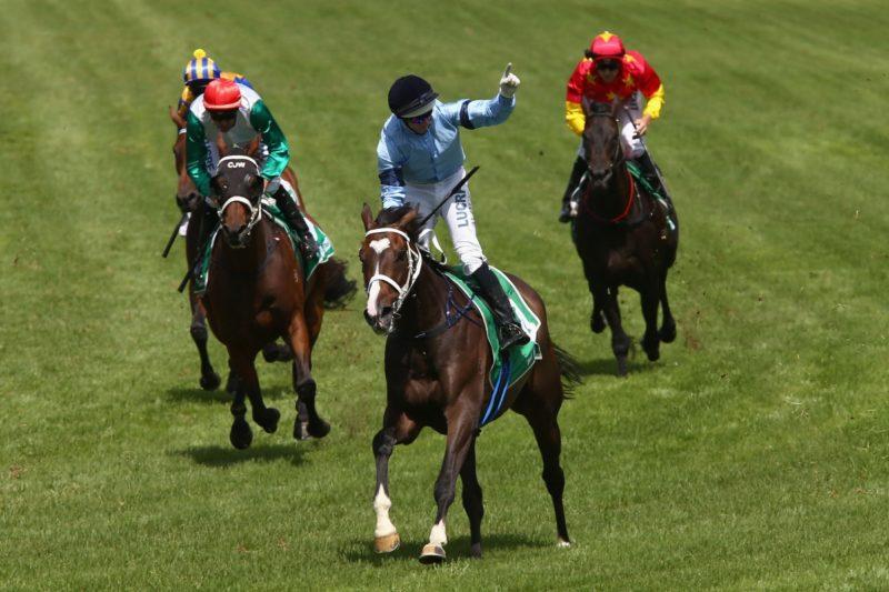 Sydney races