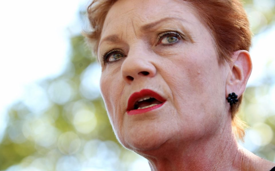media industry 39 s future is about to fall into pauline hanson 39 s hands the new daily. Black Bedroom Furniture Sets. Home Design Ideas