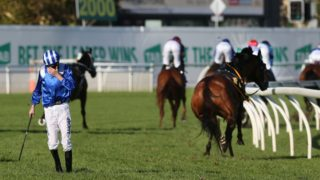 Jockey James Doyle appeared distressed and injured after Almoonqith broke its leg on the first lap.