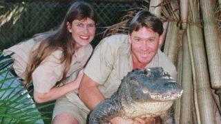 Steve Irwin Hollywood star