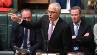 Malcolm Turnbull autism Hanson