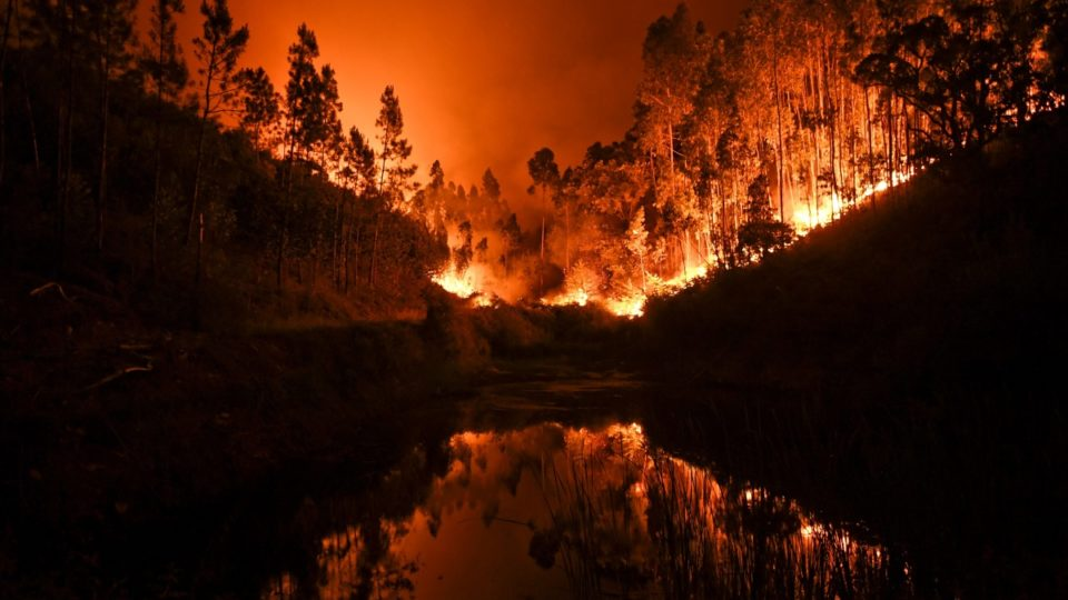 'Portugal weeps' as deadly forest fire rages, 62 dead