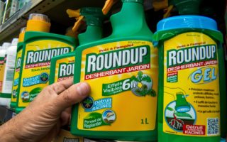 roundup bayer settlement