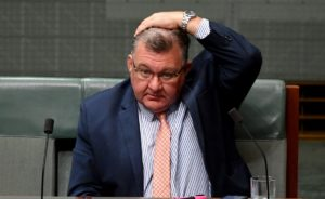 Liberal backbencher Craig Kelly has claimed renewable energy will kill people this winter by driving up energy prices