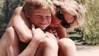 Princes Diana Prince Harry