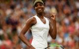 Venus williams Wimbledon final 2017