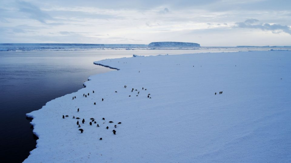 """A UN scientific agency says it is starting to see a """"warming signal"""" in the western part of Antarctica"""